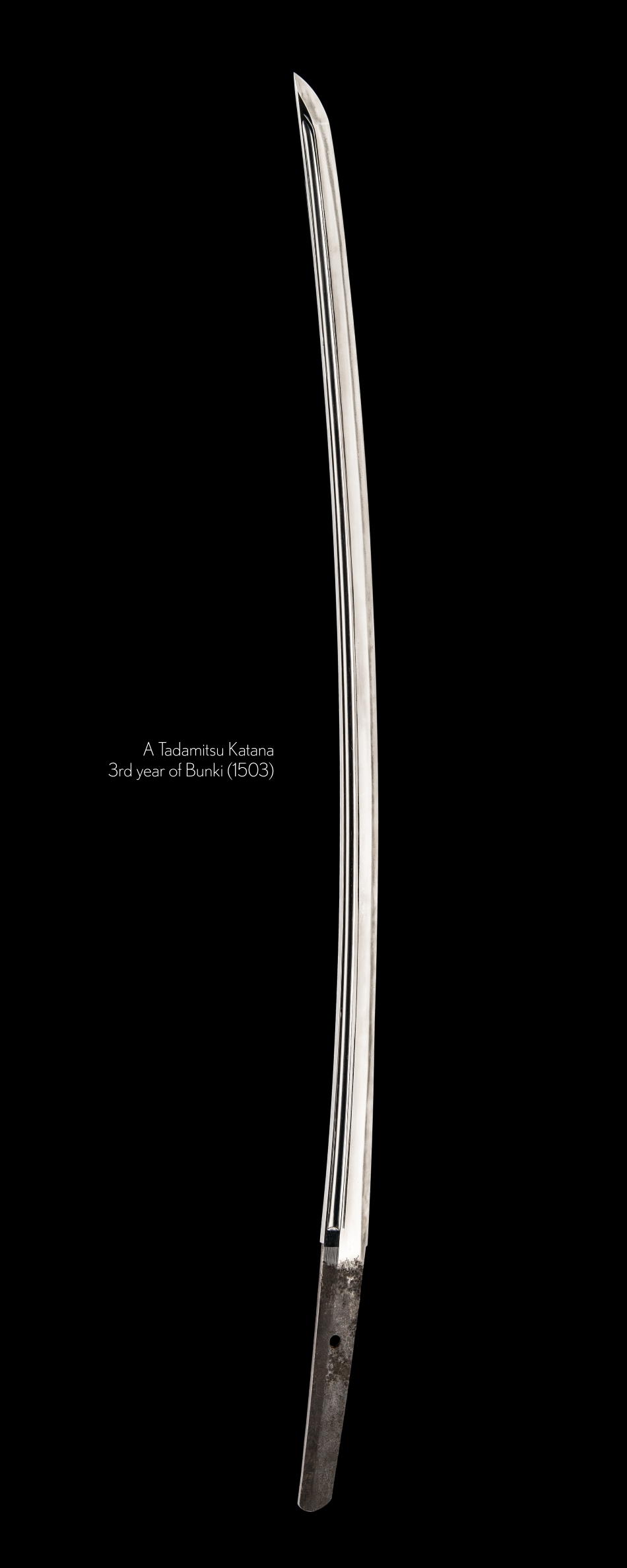 Tadamitsu Katana from August 1503